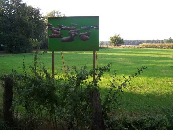 Ausstellungsansicht: Stefan Demming September 2009