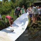 papierfischer2012