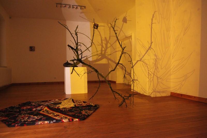 Ausstellung Gilta Jansen im Kunstraum Oktober 2012